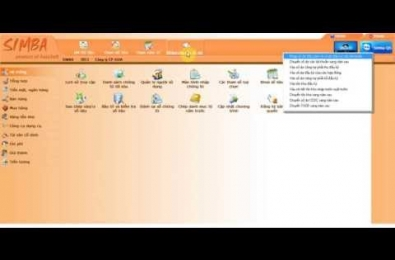 Simba software manuals: Input the opening balance